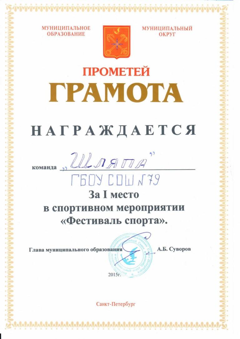 2015_1459584485_shlyapa
