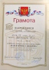 2014_1416586912_egorova_21_11