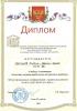 2014_1396274135_korolvkov_larin_31_03